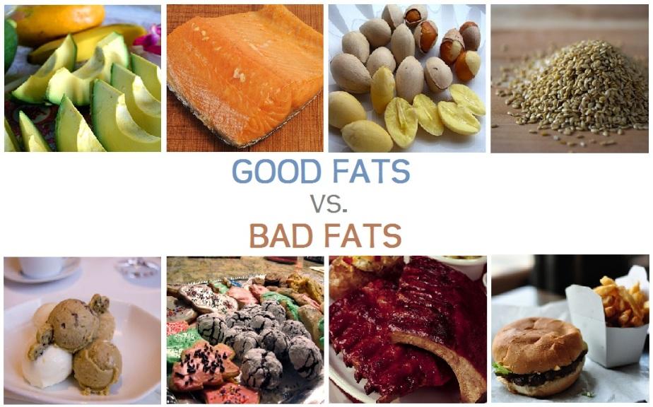 Good Fat V Bad Fat