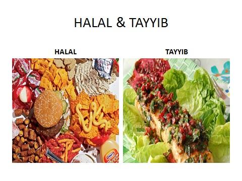 halal and taiyab foto 1