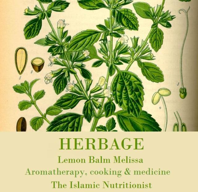 herbage-lemon-balm-melissa-text