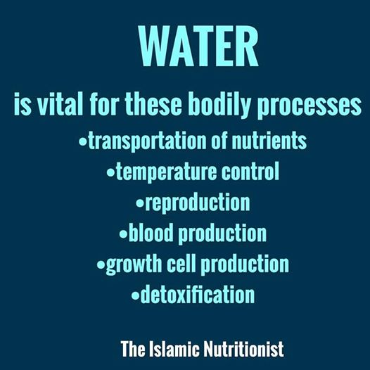 water uses