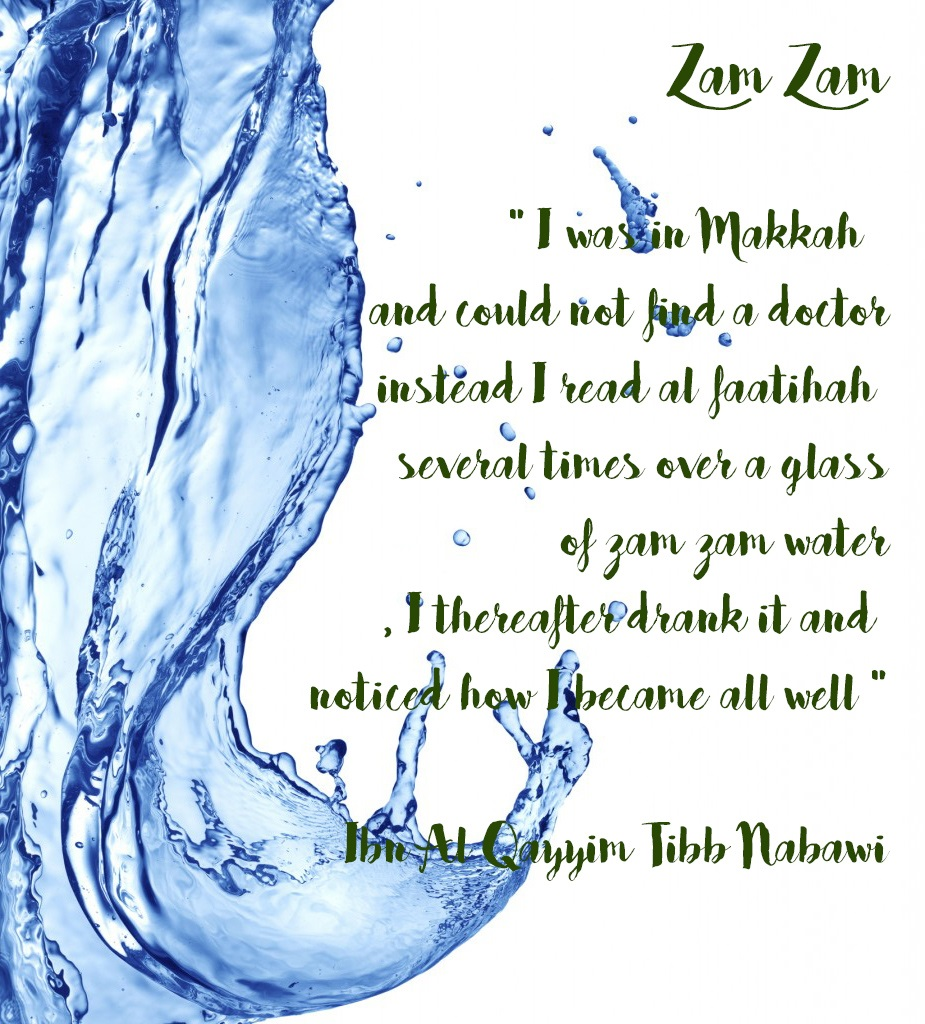 zam zam ibn al qayyim water