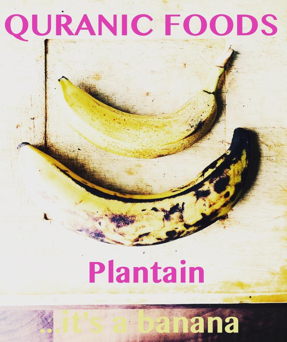 banana plantain fish 016