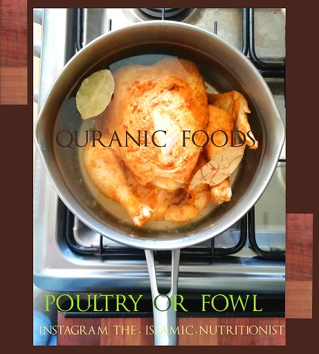 fowl chicken in saucepan small